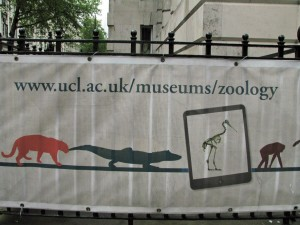 Photo of banner