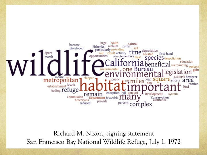 Word Cloud of Nixon's Signing Statement